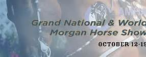 Morgan Horse Show